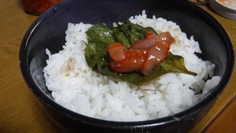 2016.8.26食事8