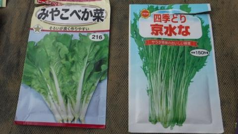 2016.8.28菜園10