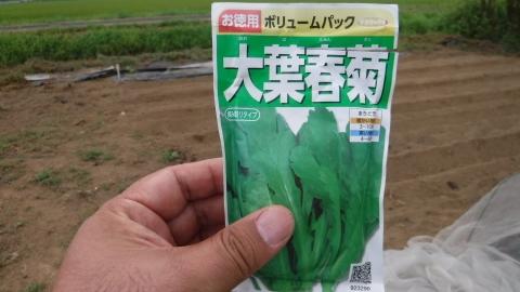 2016.8.28菜園23