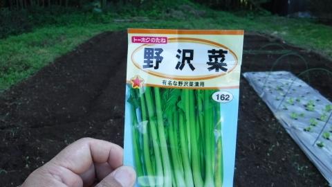 2016.10.15菜園7