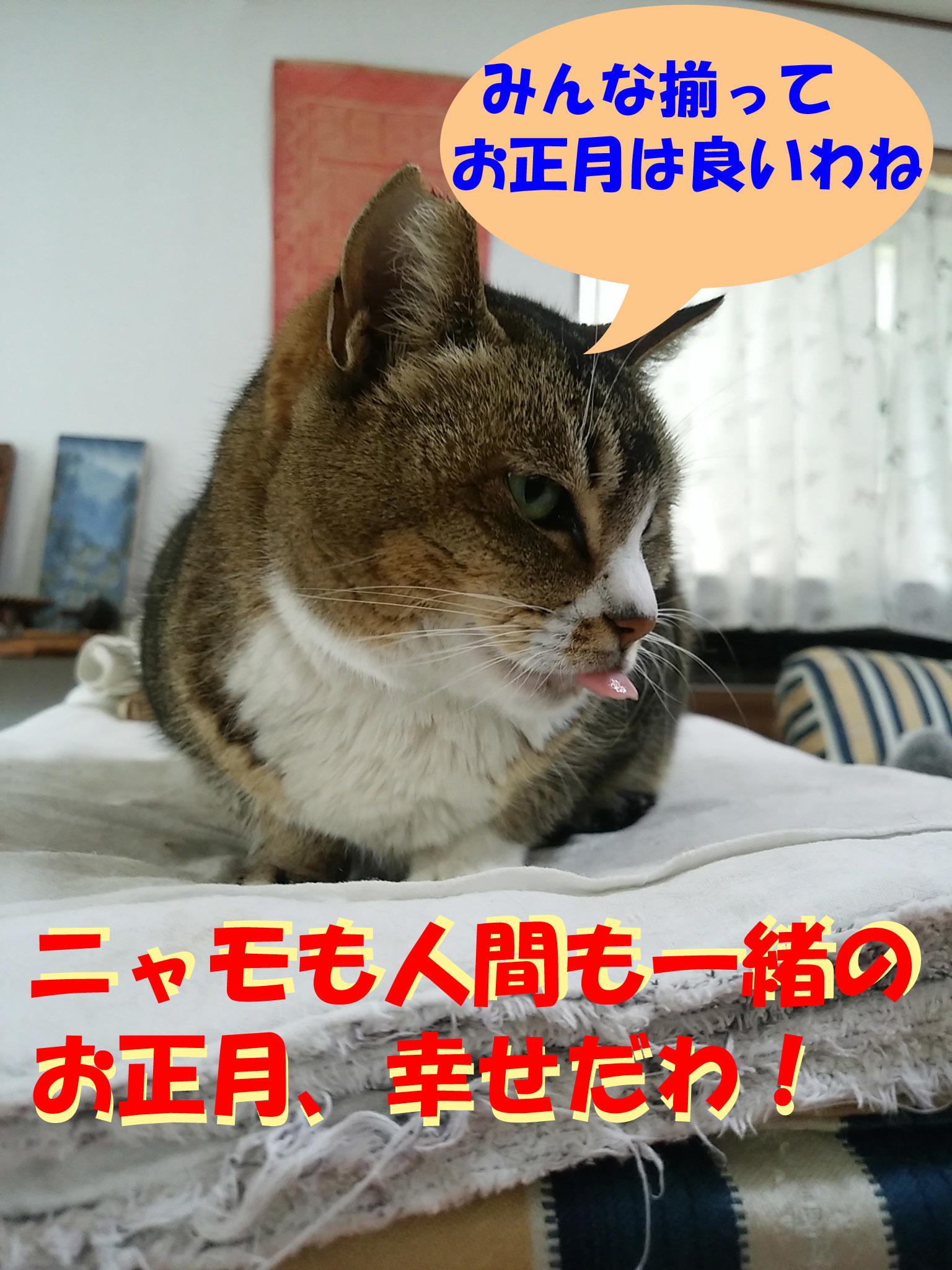 IMG_20150307_084659.jpg