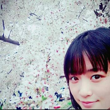 saku20160414a_convert_20160414125840.jpg
