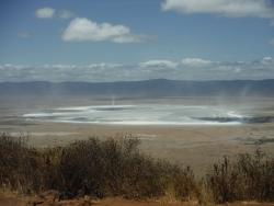 ンゴロゴロの塩水湖