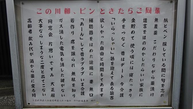 DSC00488 - コピー