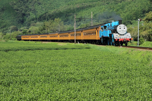 ATSU3556s2.jpg