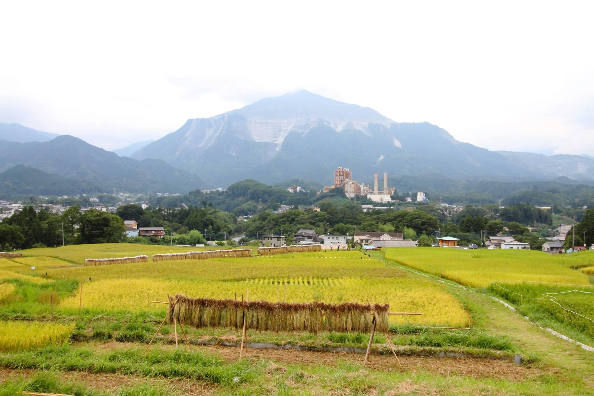 武甲山2016911