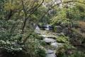 姫路好古園滝