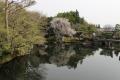 姫路好古園池