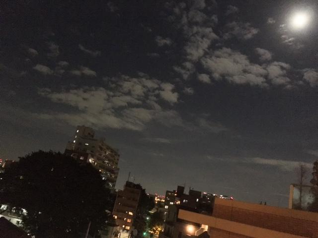 エノキ夜景2