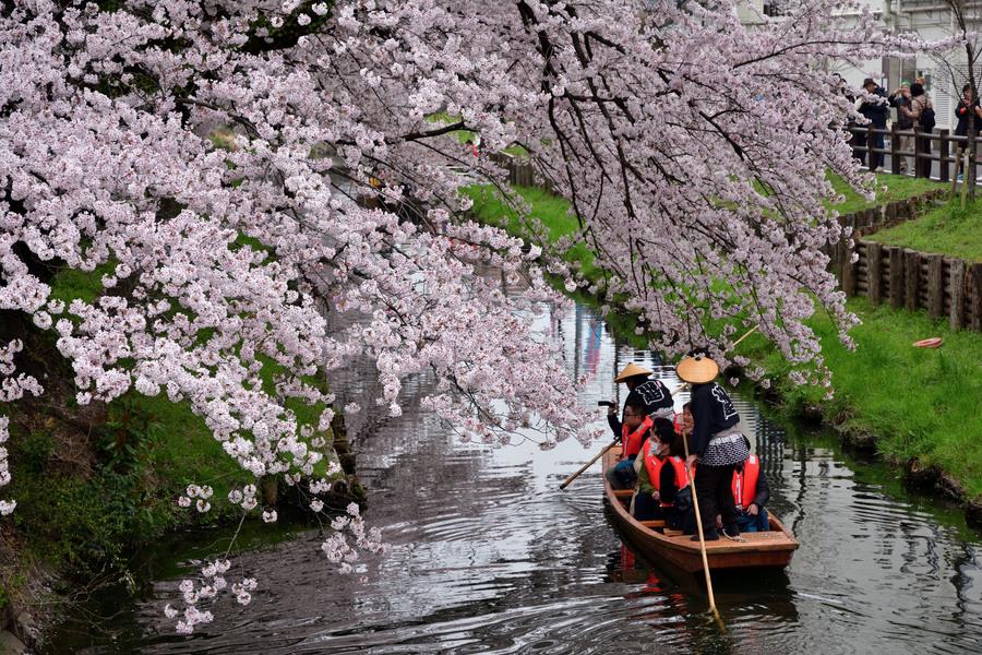 小江戸川越・春の舟遊変更済