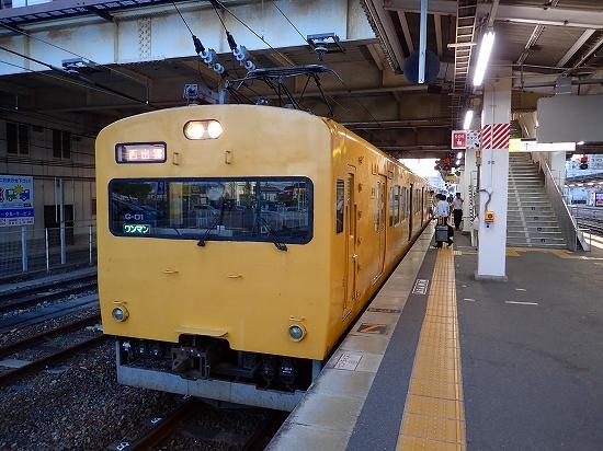 P8110310.jpg