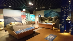 鹿児島県立博物館