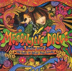 mescaline drive