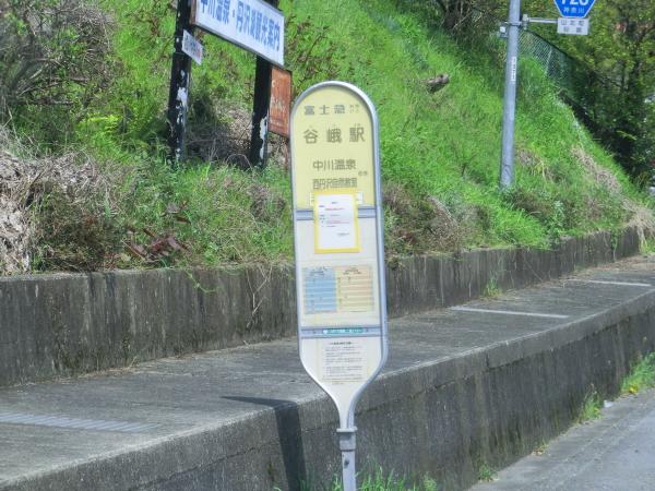 160416桜道志村0002