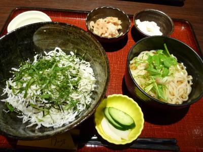 2016.5.7しらす丼-1