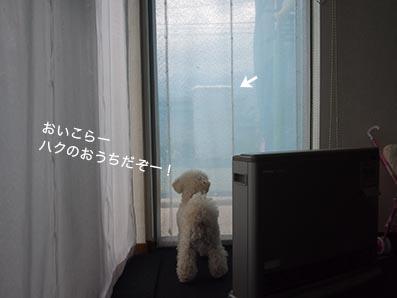 160526_8.jpg