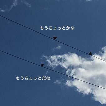 160617_2.jpg