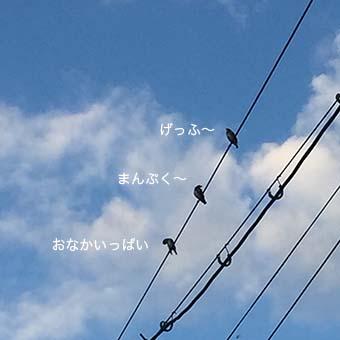 160617_4.jpg