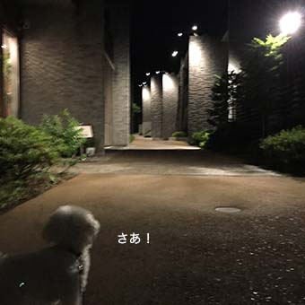 160709_9.jpg