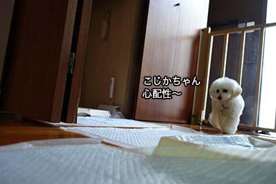 160711_11.jpg