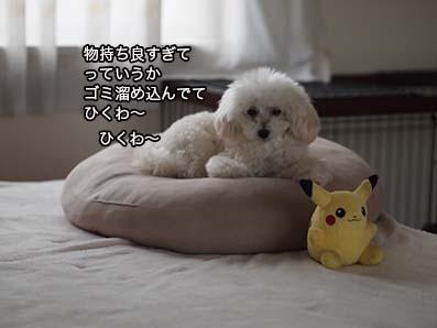 160824_5.jpg