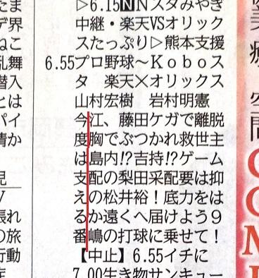 DSC03224 - コピー (2) - コピー