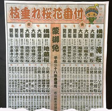 DSC03284 - コピー