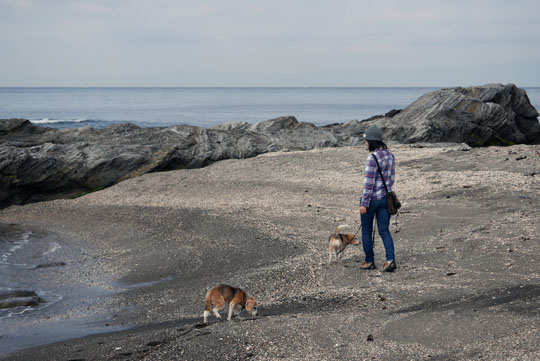 07海岸散歩2