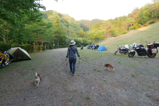 207キャンプ場も散歩