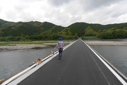 222佐田の沈下橋