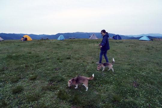 405キャンプ場散歩
