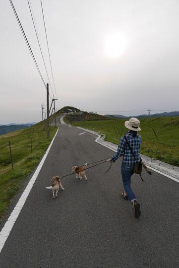400四国カルスト散歩