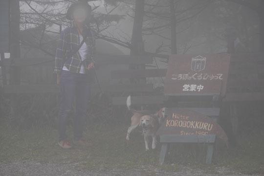 116霧のころぼっくる