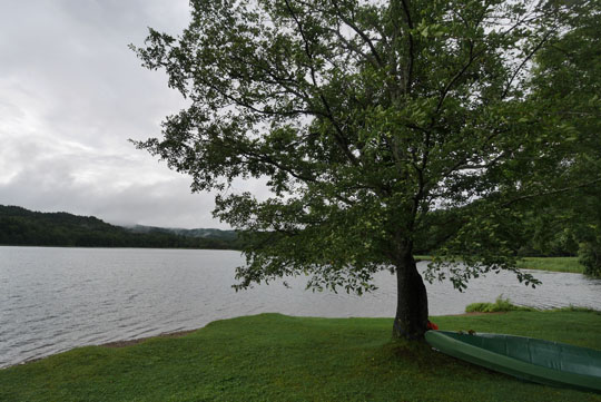 201湖畔の様子
