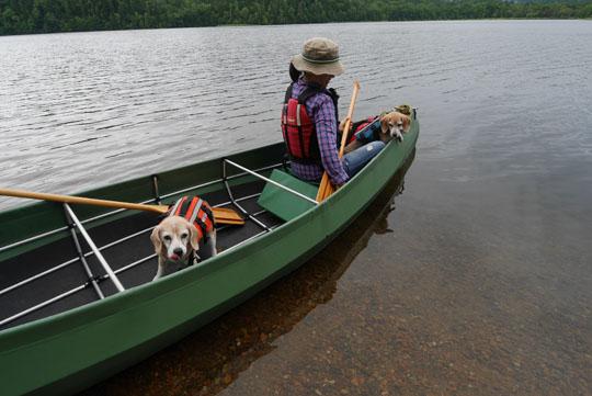 207湖上へ出発