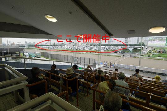 15川崎競馬場2