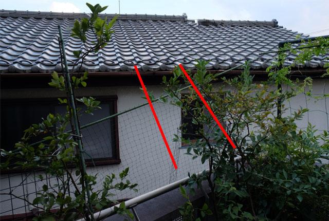 6366 隣家屋根に橋架け 640×430