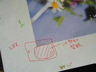 DSCF8547.jpg