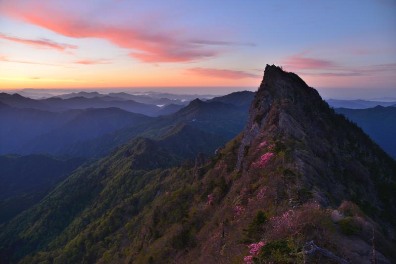 アケボノツツジ咲く石鎚天狗岳の夜明け (愛媛県)