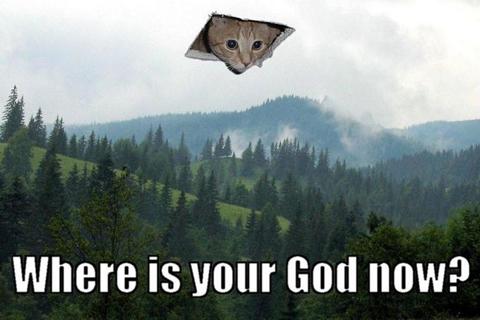 Ceiling_Cat2