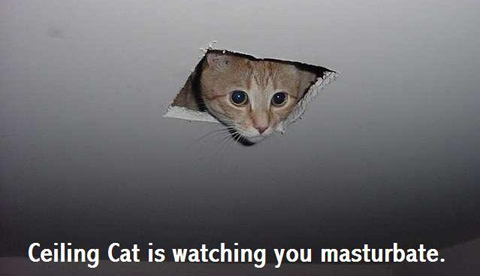 Ceiling_Cat_by_SleepySnitter