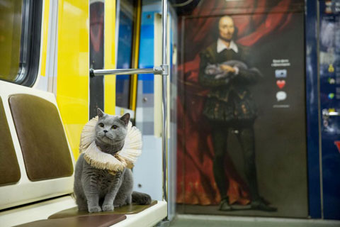 Shakespeare-traincat-5