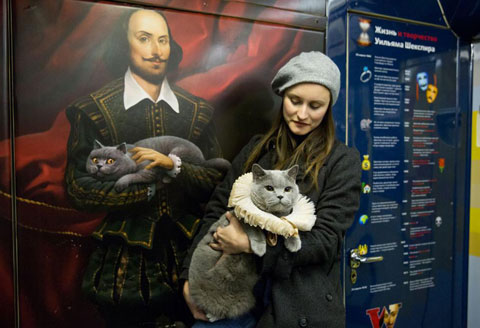 Shakespeare-traincat-6