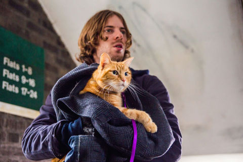 gallery-1472746745-a-street-cat-named-bob-luke-treadaway