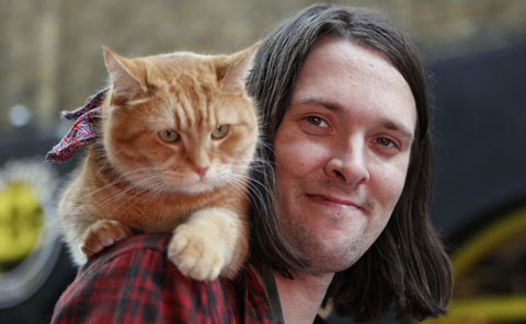 gallery-showbiz-james-bowen-bob-the-cat.