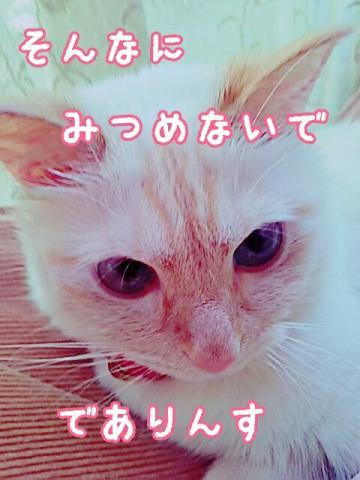 20160512210333646.jpg
