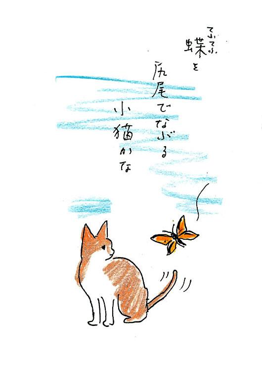 一茶と猫3 蝶々を