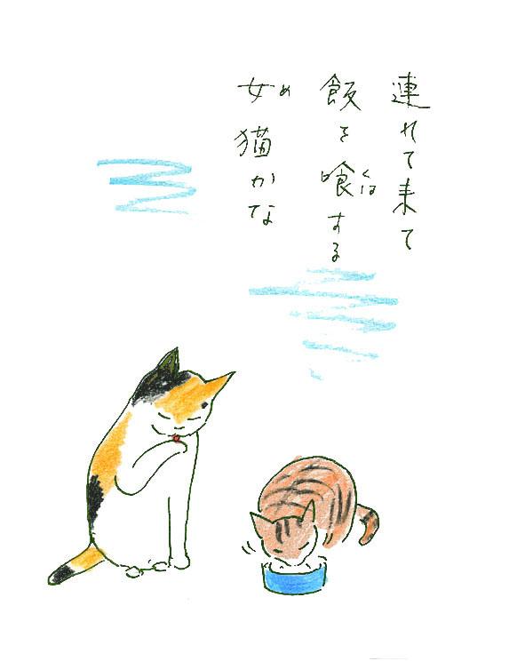 一茶と猫6