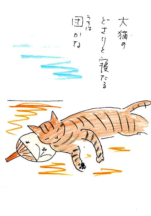 一茶と猫7