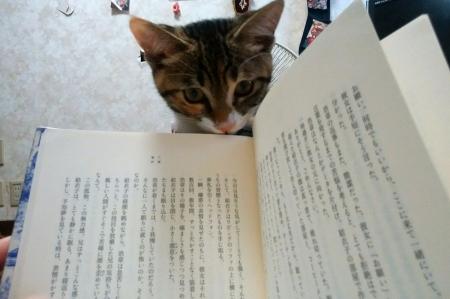 本やめて!